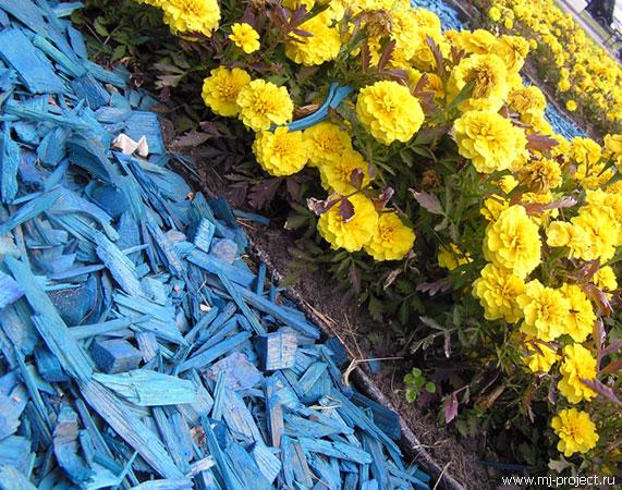 Цветы и какая-то синяя фигня непонятная