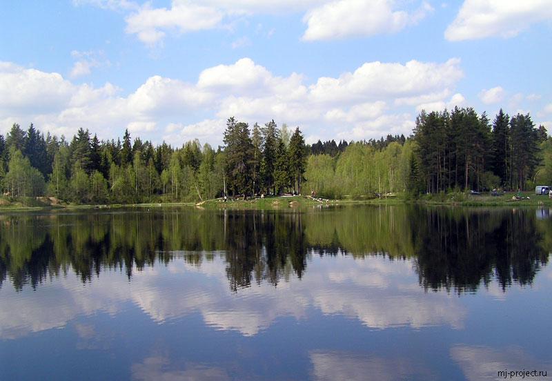 Деревья отражаются в Светлом озере